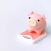 【カロリー・ダイエット】カロリーコントロールで脂肪率を落とそう② ダイエット開始2週間の経過報告。