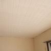 天井ペンキ塗り・トイレクッションフロア貼り・いろいろ事件起きてます