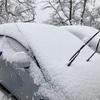 風景:新潟散歩【近所の雪景色 続き】
