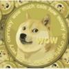 ドージコインの柴犬は日本のかぼすちゃん?