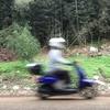 【豆知識】原付で制限速度(30km/h)を守ると死ぬ