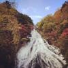 【栃木の旅】思い出の那須を訪ねよう♬
