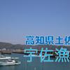 【釣り場調査】高知県土佐市・宇佐漁港(松岡・福島)はどんな釣り場?(漁港)