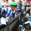 JRA実はここまでキタサンブラック以上の成績!? セントライト記念(G2)出走のアノ馬と歴史的名馬の意外な共通点とは……
