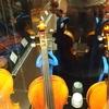 ほんの少し余裕がある人の新作バイオリン選び