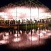 あしかがフラワーパークの大藤ライトアップ(2)/絶景のライトアップを堪能!