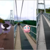 大分県・九重の日本一の大吊橋から「タチサレ……」【ポケモンGO】2018年9月大分・宮崎旅行の思い出写真・その5