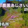4K【服部農園あじさい屋敷】ドローン空撮!茂原市「雨上がりの楽園」