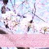 【カメラ散歩】ホワイトバランスを使いこなして写真の色味を変える