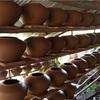 壺作りの町トワンテー