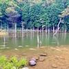 一の俣川砂防堰堤(山口県下関)