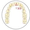 【歯の健康】下前歯の裏に歯石が溜まらないようにする