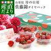 産地直送 温室栽培さくらんぼ 佐藤錦 秀品 ダイヤパック×3セット (80g×3P) 送料無料 母の日プレゼント 桜桃 さとうにしき 他をご紹介します。