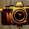 カメラ記念日・OM-D E-M10