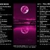 新月と満月の宴 〜黄金ポップス/ジャズスタンダード/精鋭プログレハウス/激烈スカ〜 - New Moon & Full Moon -
