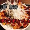 豚丼【なまらうまいっしょ!】in伊勢原