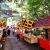 八幡神社の秋祭り