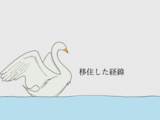 【福岡移住】20代で東京から福岡市へ移住した理由をありのまま書きます|べつ東京じゃなくてもいいじゃん