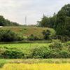 藤藪ため池(岐阜県可児)