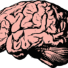 【これで改善!】記憶力を鍛えるために今すぐするべき3つの行動!