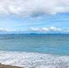海とキノコ