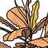 ブセファランドラの成長を早める方法、特徴、魅力、育て方を語り尽くす