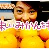 034食目「YouTube ep002【くだものがたり】美味しいみかんを探そう!」
