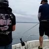 能登のアオリイカ遊漁船を予約しよう