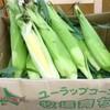 北海道八雲町から、旬のトウモロコシとじゃがいもが届きます