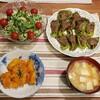 2018/06/05の夕食