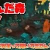 【マイダン】歪んだ森を攻略!~ここは安全って聞いてきたんだけど!~【MinecraftDungeons】#17