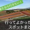 北海道に来たなら行きたい!!絶景といいお店まとめ