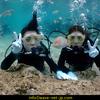 笑顔はじける体験Diving!