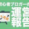 【初心者の運営報告】ブログ運営一ヶ月目!運営報告するよ!PVは?人気記事は?