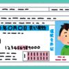 今から取得する普通免許で乗れる車は?準中型免許ができた事で学科試験にも影響が