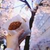 八重洲さくら通りの、夜桜ライトアップが大好き。夜の東京お花見日記