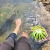 三浦の海で英気を養え!ちょっと早めの黄金鯖ライド