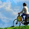 自転車保険は必要? 加入は義務?  選び方をご紹介