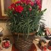 ふるさと納税で母の日に贈った花!2種類をレビュー
