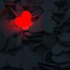 〇〇を愛する人は【勝手に】愛される