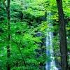 新緑も紅葉も雪景色も楽しめる奥入瀬渓流の歩き方