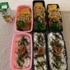 秋晴れ 〜今日のお弁当〜今日のわんこ〜