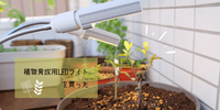 ベランダの日当たりが良くないから植物育成用LEDライトを買った