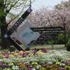 大村公園 散歩の途中で癒される光景