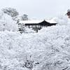 東福寺の雪、氷の雲海に浮かぶ通天橋。
