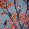 紅葉と3羽すずめ
