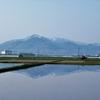 ◆4/29      新緑の高館山①