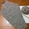 ラグランセーターを編んでいます。そでまで編み終わりました。