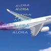 4万円追加でハワイアン航空変更して良かったのか?