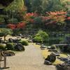 世界文化遺産「醍醐寺」紅葉(三脚ルールはまちまち)